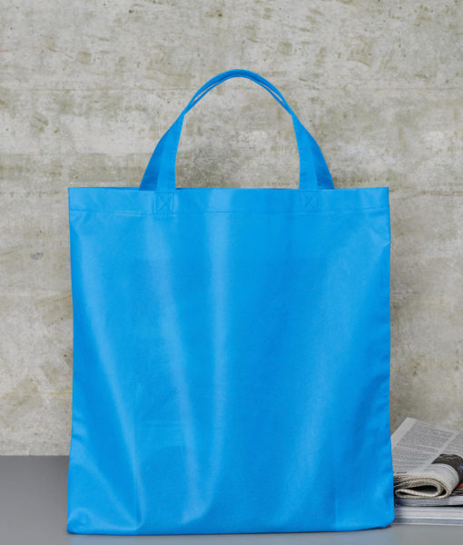 Sac Basic Shopper